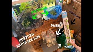 ПОКУПКИ ИЗ ПТИЧЬЕГО РЫНКА САДОВОДА МОСКВА (ВЕСНА 2020) l РЫБКИ, РАСТЕНИЯ, КОРМ И ДРУГОЕ