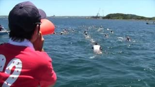 和光中学校第65回館山水泳合宿の4日目の様子です。沖6キロ遠泳がありま...