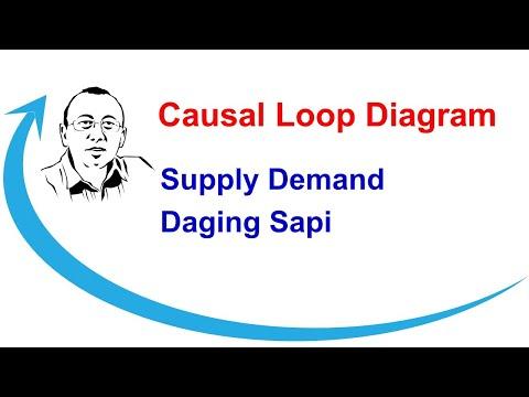 Latihan Causal Loop Diagram contoh kasus Daging Sapi  YouTube
