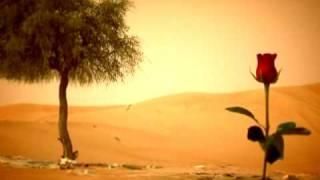 اغنية الأماكن عود بصوت محمد عبده مونتاج قناة البوادي مونتاج محمد الدليمي