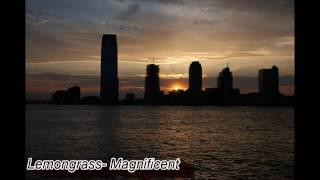 Lemongrass- Magnificent