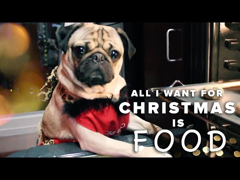 All I Want For Christmas Is Food - Doug The Pug