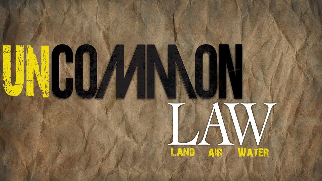 The UN-COMMON LAW cesta que vie trust: YOU are the Beneficiary