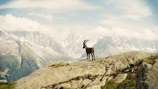 Peaks - Chamonix Mont Blanc