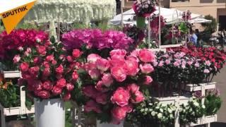 شاهد...مدينة جبيل اللبنانية تتلون بمهرجان الزهور
