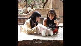 200214 러블리즈 지애,지수 인스타2 lovelyz jiae,jisoo instagram 스타카페 라부에…