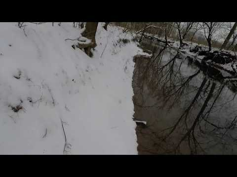Kentucky Creek Hunting Ducks In The Snow