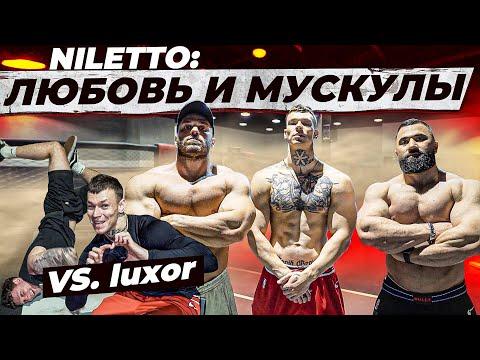 NILETTO: ЛЮБОВЬ и МУСКУЛЫ / vs LUXOR