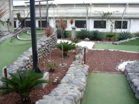 Lava Rock Garden 2