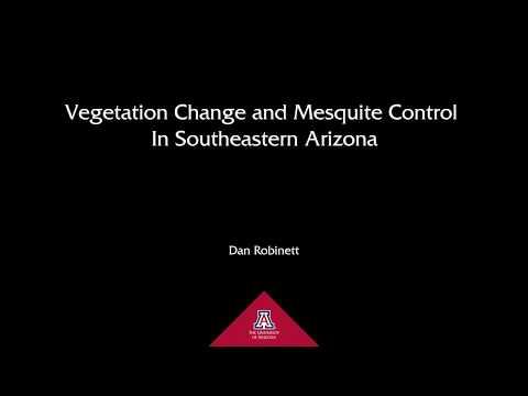 Vegetation Change and Mesquite Control in Southeastern Arizona - Dan Robinett