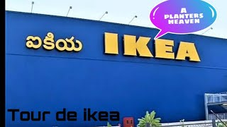 IKEA Hyderabad tour for plant lovers