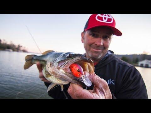 Crankbait Fishing Lake Guntersville For Springtime Bass