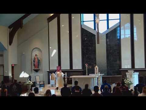 Solemnidad de Todos los santos- 1 de noviembre
