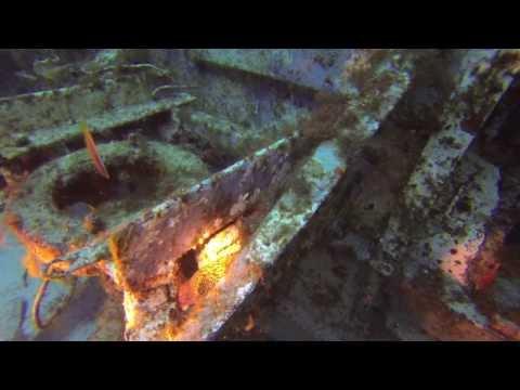 Dive Malta - October 2013