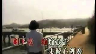 Liza Wang - Stealing Hearts With Love