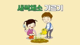 [어린이 영양교육] 새싹채소 기르기