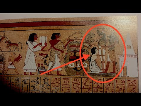 You're Not Going to Believe What the Ancient Pharaohs Did, 3500 Y/O Hieroglyphic Uncovered!