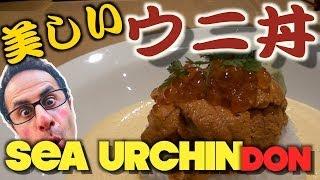 見たことないウニ丼を食べる【Sea urchin DON】 Japanese rice bowl INGO