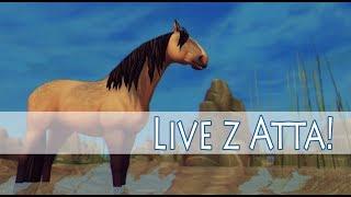 ???? LIVE || LIVE NA ZAKOŃCZENIE WAKACJI || STAR STABLE - SERWER COOKIE CRATER || ALICIA ONLINE - Na żywo