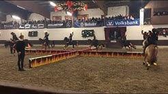 Tür 2: Das Ponyshowteam auf der Gala in Herford - Adventskalender 2018