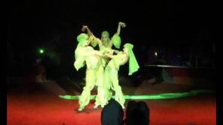 видео Цирковой коллектив «Шоу Воды, Огня и Света!»