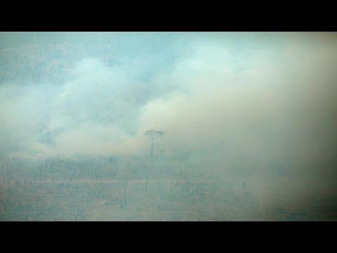 ست ولايات في البرازيل تطلب مساعدة الجيش لمكافحة حرائق الأمازون…  - نشر قبل 6 ساعة