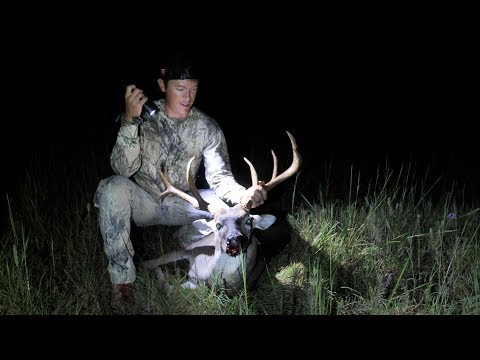 My FIRST BIG WHITETAIL BUCK! Bow Hunting early Archery Season