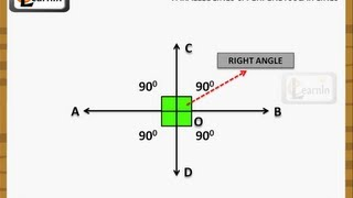 Parallel lines and Perpendicular lines - Geometry