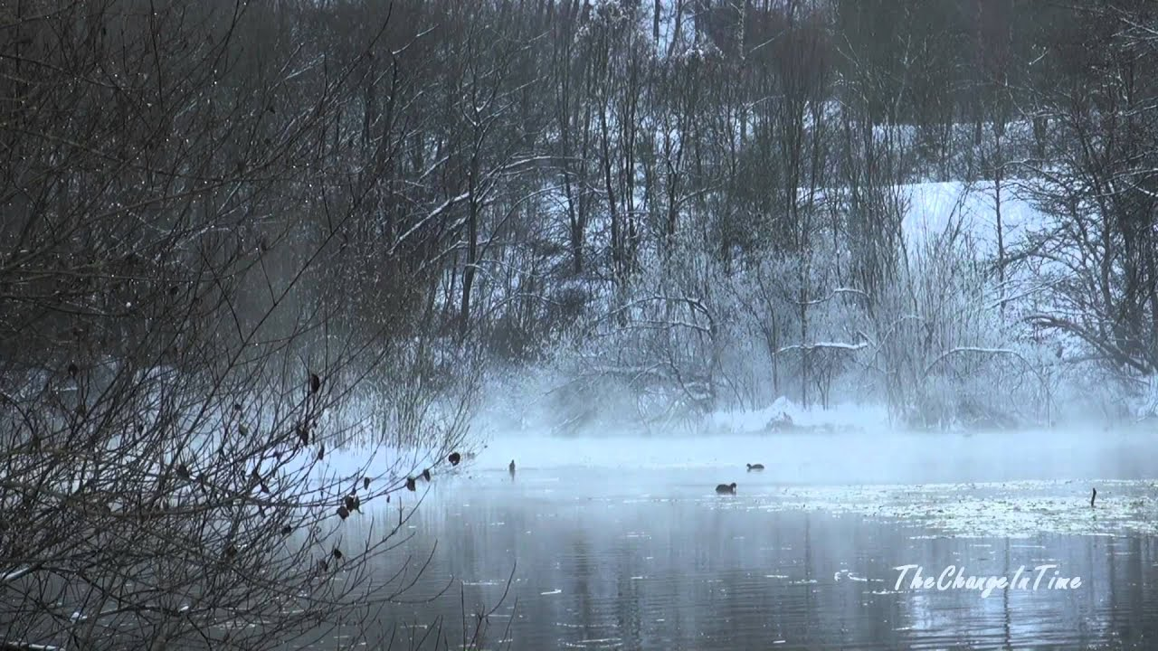 Winter Snow Landscape - YouTube Relaxing Music Youtube