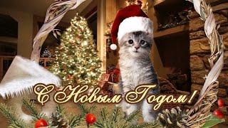 С Новым Годом! Новогоднее поздравление от котенка  #6