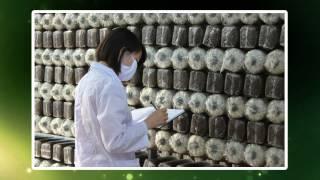 Giới thiệu Công ty TNHH Công nghệ sinh học Phú Gia