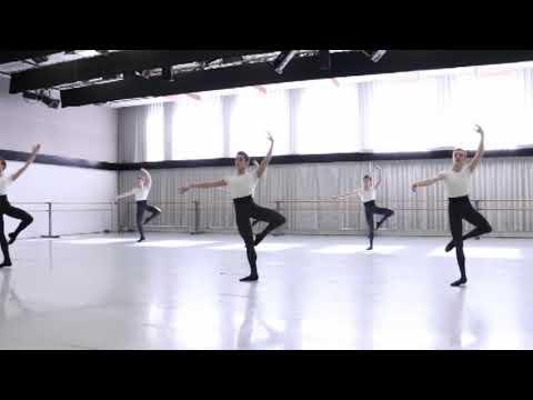 KIROV ACADEMY OF BALLET OF WASHINGTON DC/ MICHIGAN BALLET ACADEMY