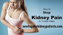 hqdefault - How To Get Rid Of Kidney Pain Quick