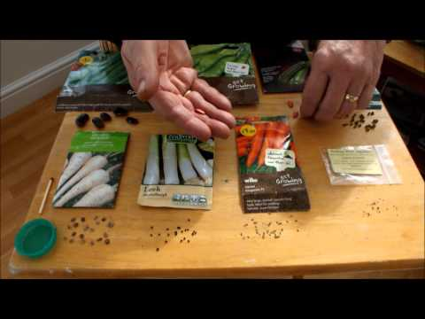 HGV Sowing small seeds made easy with a neat trick.start to finish.