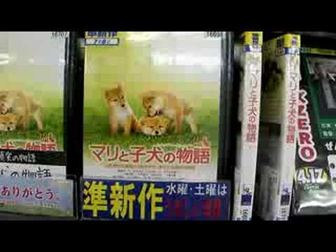 Japanese DVD/Video Rental Store