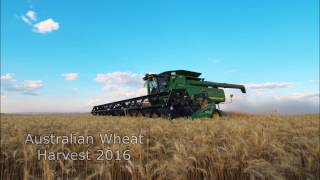 Australian Wheat Harvest 2016