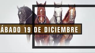Vidéo de la course PMU TANQUERAY H