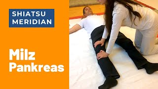Video SHIATSU Meridian des Monats - der Milz-Meridian download MP3, 3GP, MP4, WEBM, AVI, FLV Juli 2018