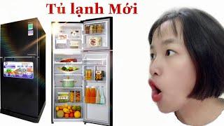 Dùng Hết Tiền Bỏ Heo Mua Tủ Lạnh Mới