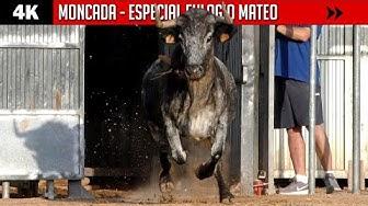 Imagen del video: Los toros de Eulogio Mateo triunfan en Moncada