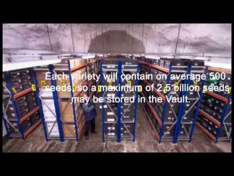 PlayGround Svalbard Global Seed Vault