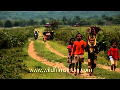 Village near Lospalos, Timor