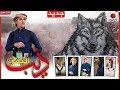 عبدالفتاح الفقيه | ذيب اليمن | اقوى شيلات حماسيه | سلموا على الذيب 2019