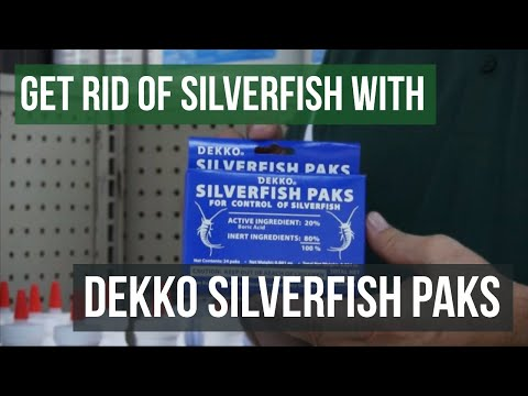 Get Rid Of Silverfish With Dekko Silverfish Paks