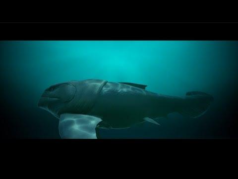 Devonian Seafloor Trailer
