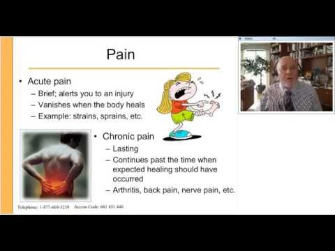 Got Pain Curcumin The All In One Solution for Pain and Inflammation, presented by Terry Lemerond