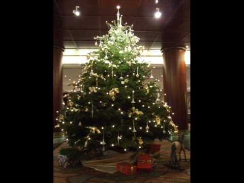 Arbol de navidad Travel Video