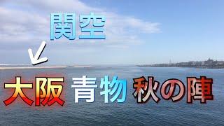 【HIT連発!!】今年最後の青物狙い!!大阪で連日のハマチとの格闘記録!!