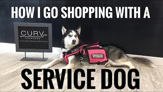 HOW I SHOP WITH A SERVICE DOG ~ CURV EXCHANGE