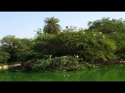 Beauty at Delhi Zoo